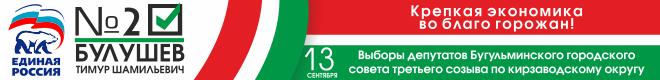 Булушев Тимур Шамильевич